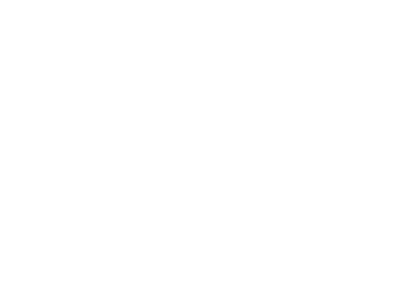 Bramley Business Solutions white